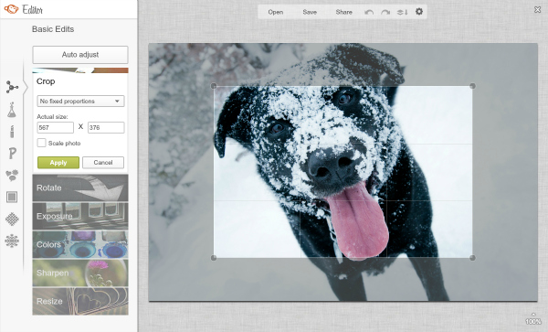 screen shot of dog photo getting cropped in the Editor