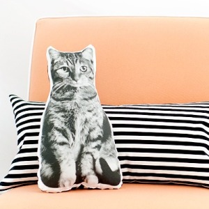 Photo of Pet Pillow from Yellow Brick Home