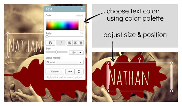 screen shots showing text palette and text positioning controls