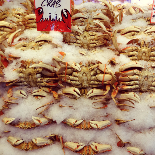 Dungeness Crab nestled in ice in the Pike Place Market