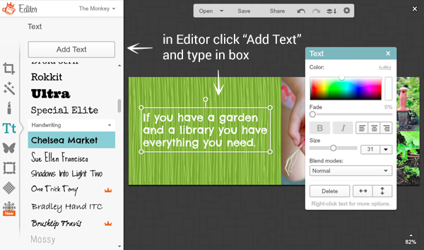 screen shot showing adding text in the Editor